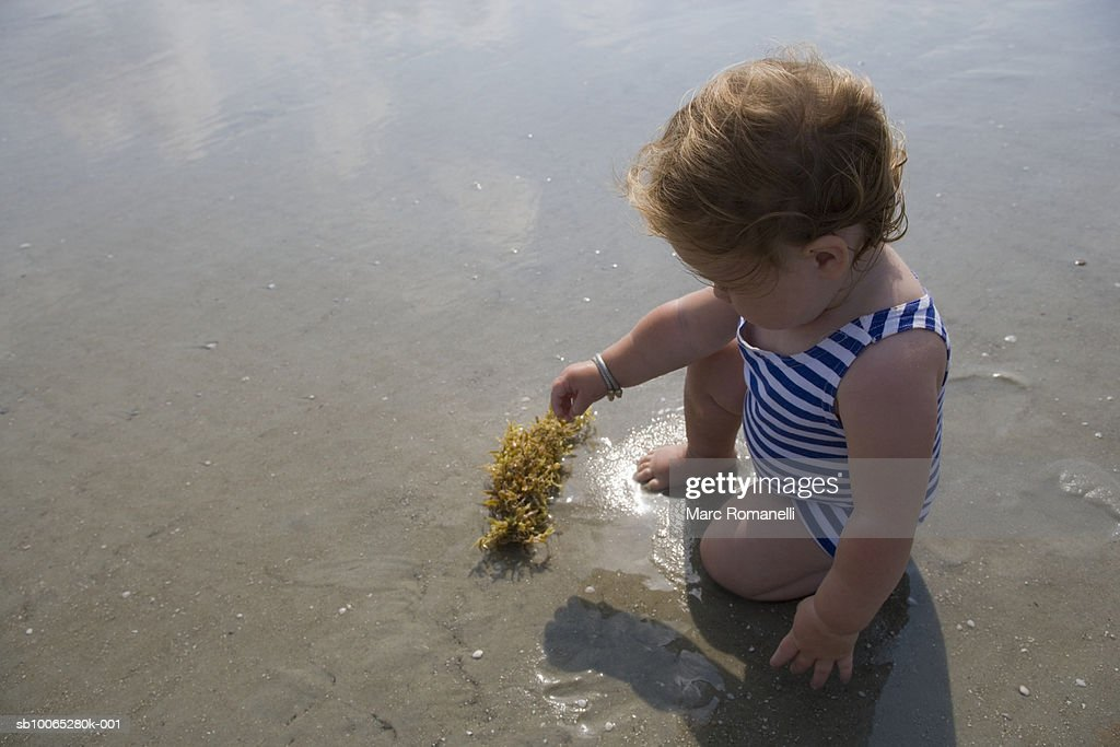 Baby girl (9-12 months) playing with seaweed on beach : Foto stock