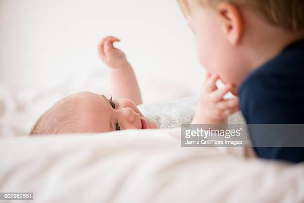 baby girl (12-17 months) touching brother face (2-3) - 12 23 months stock pictures, royalty-free photos & images
