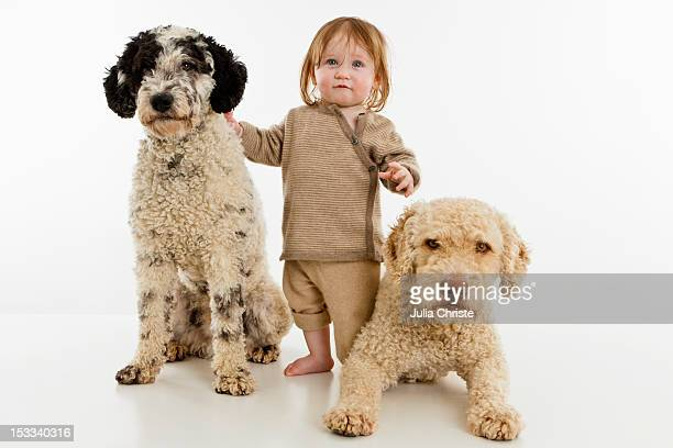 A baby girl with two dogs
