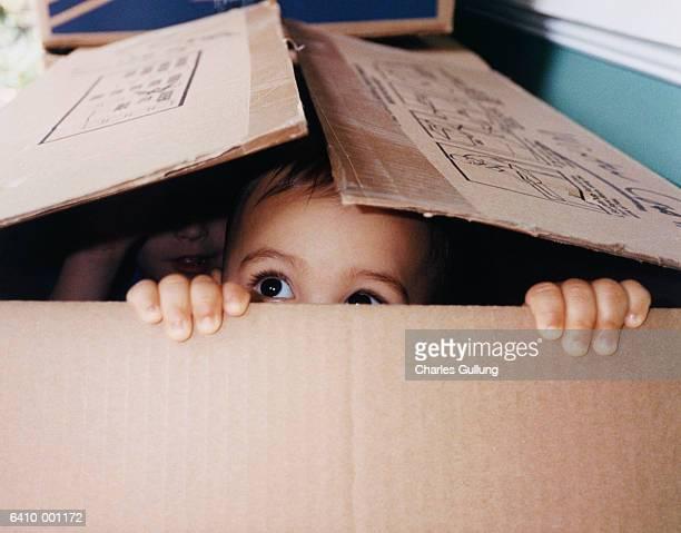 Baby Hiding in Box