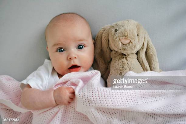 baby in bed with soft toy - baby stock photos and pictures