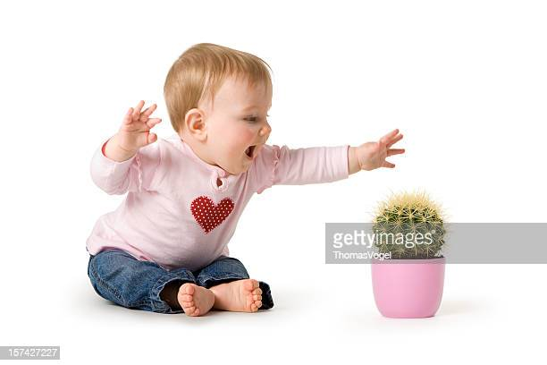 Baby in danger - Child Cactus Playing Pain First Aid