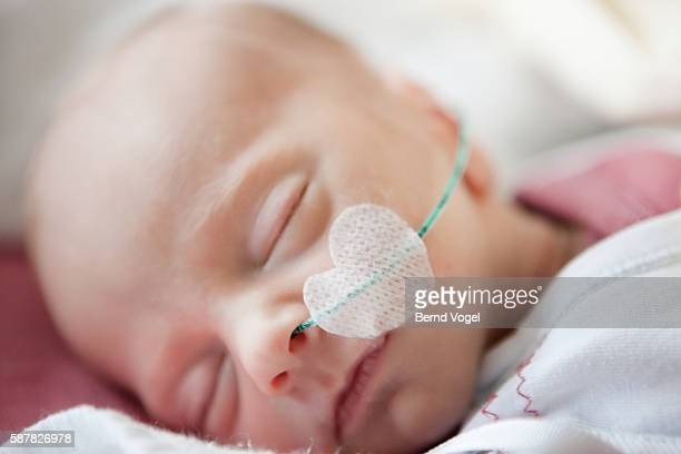 baby in intensive care - premature stock pictures, royalty-free photos & images