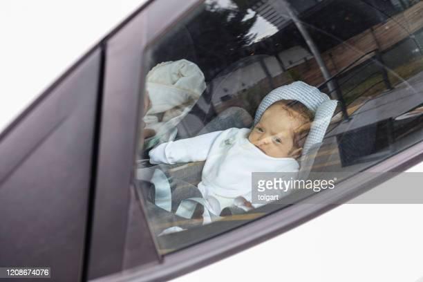 baby in de auto - defending stockfoto's en -beelden