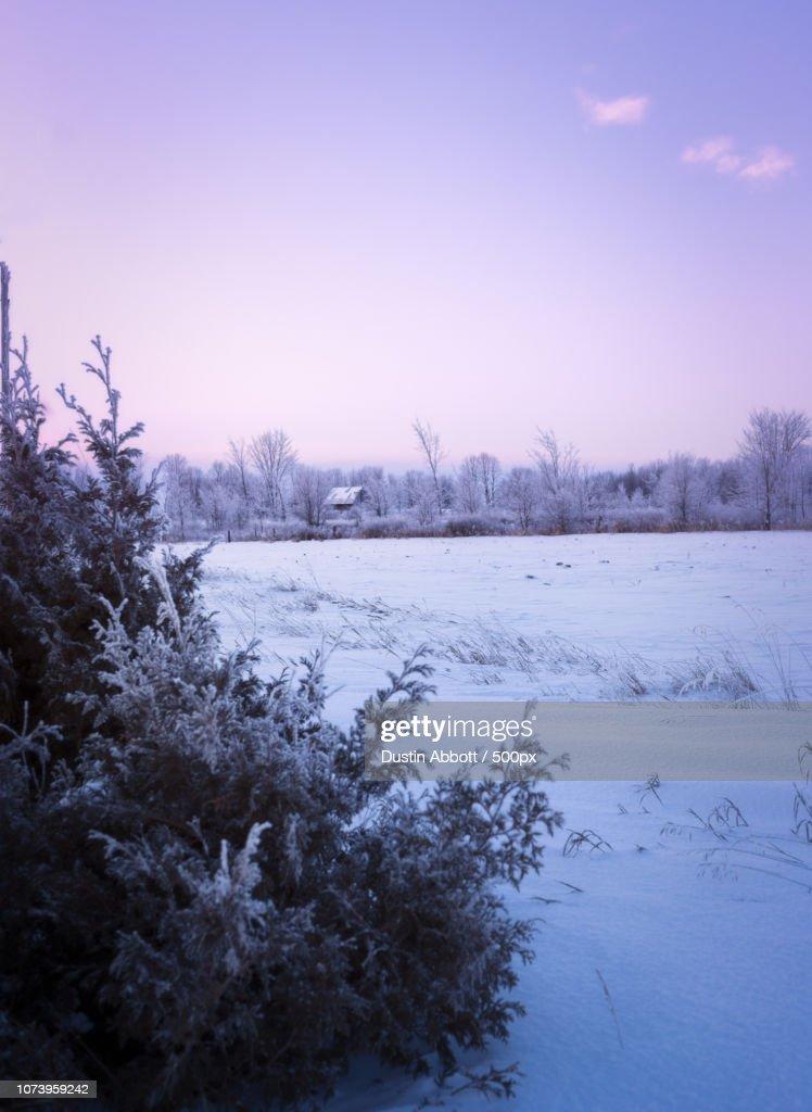 Baby, It's Cold Outside : Foto de stock
