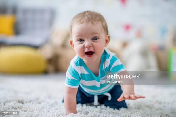 baby learning to crawl - de quatro imagens e fotografias de stock
