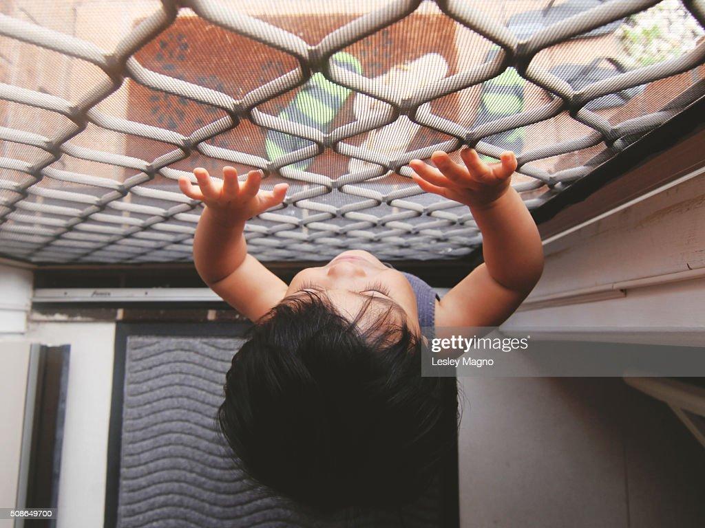 Baby looking outside the screen door : Stock Photo