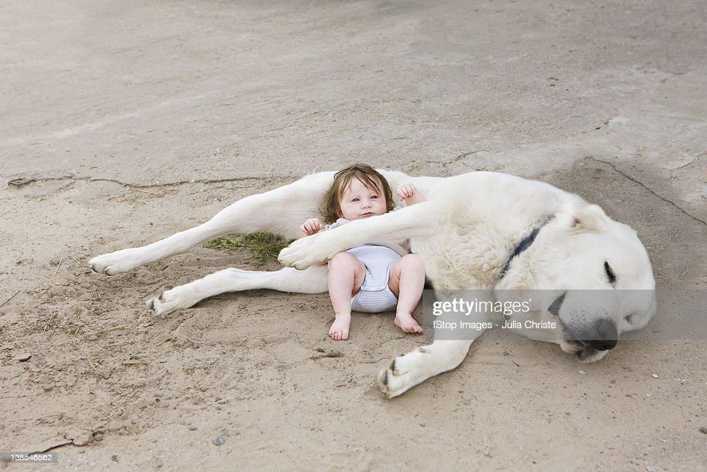 A baby lying with a dog : Stock Photo