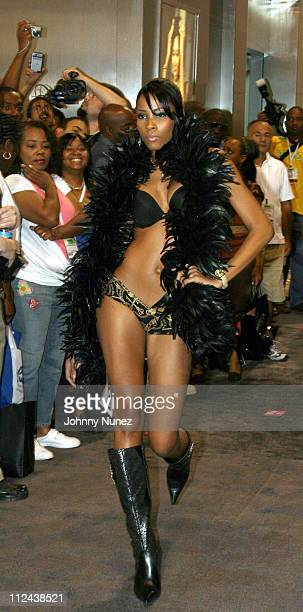 Baby Phat Model during Magic Show Expo '06 Day 2 at Las Vegas Convention Center in Las Vegas, Nevada, United States.