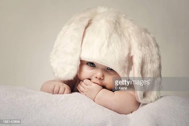 baby - animali pasquali foto e immagini stock