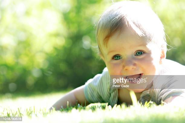 baby playing on grass - innocence stock pictures, royalty-free photos & images