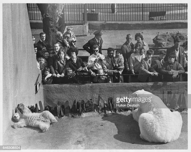 1900 London Pictures And Photos Getty Images