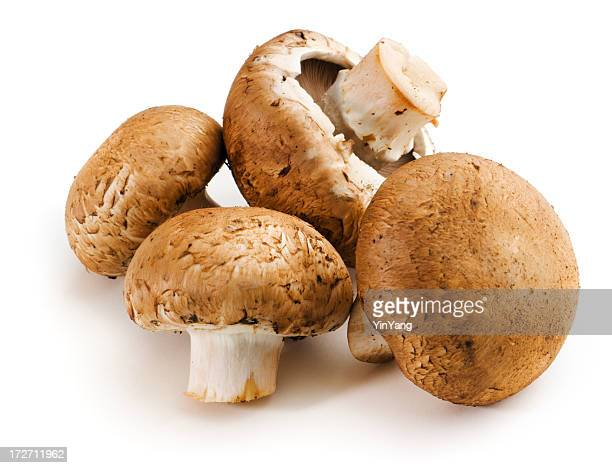 Baby Portabello Mushrooms, Fresh Raw Vegetable Isolated on White Background