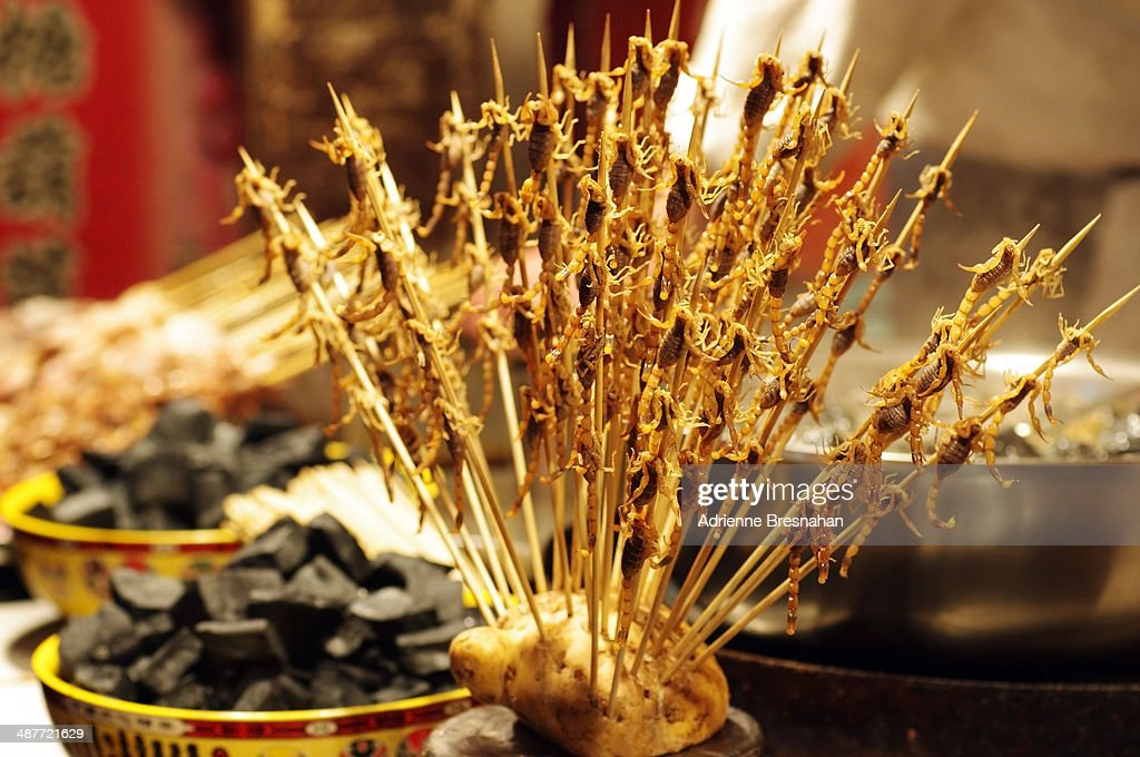 Baby Scorpions On A Stick Stock Photo - Getty Images