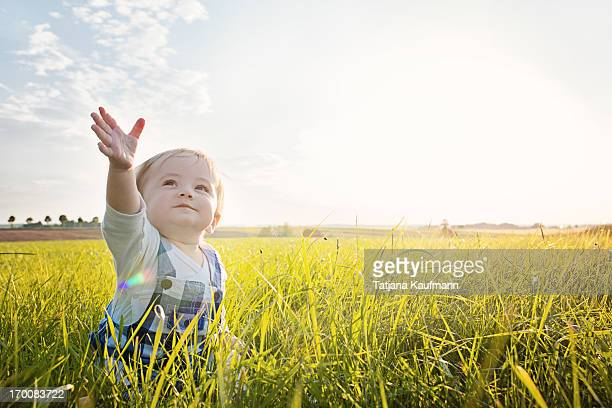 baby sitting in grass reaching to the sky - innocence stock pictures, royalty-free photos & images