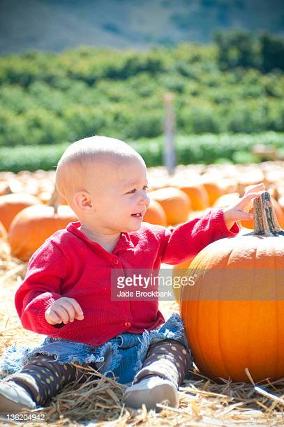 Baby sitting in pumpkin patch