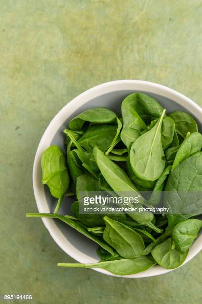 baby spinach in a bowl. - spinach stock photos and pictures