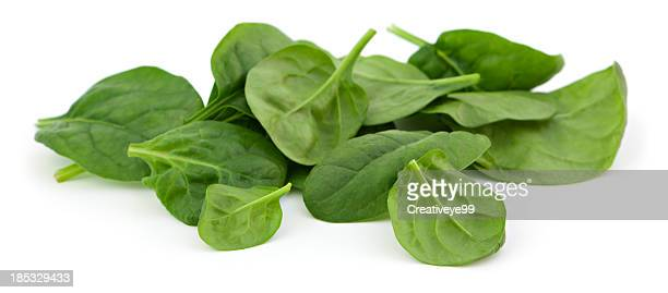 baby spinach - spinach stock pictures, royalty-free photos & images