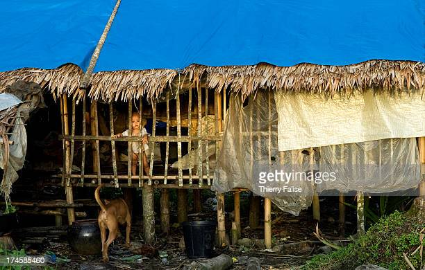 A baby stands in the family's temporary house built in a village devastated by cyclone Nargis According to official figures the cyclone killed about...