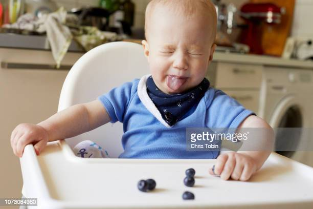 baby sticking tongue out at blueberries on high chair - sour taste stock pictures, royalty-free photos & images