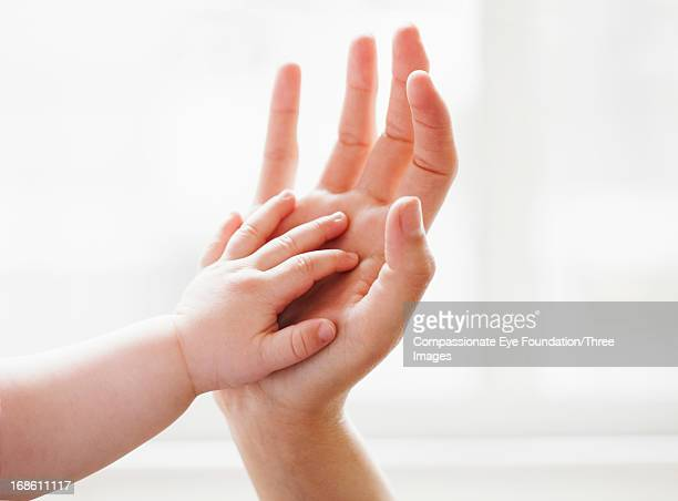 Baby touching mother's hand