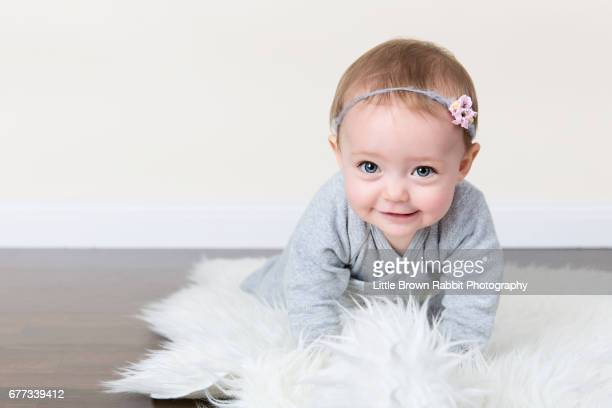baby wearing grey in crawling position - baby girls stock pictures, royalty-free photos & images