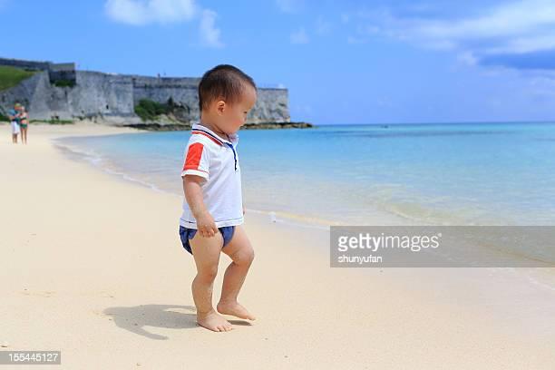 Baby's Bermuda