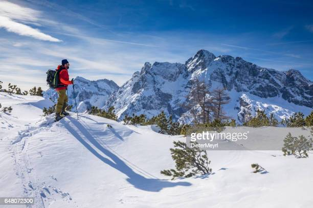 back country skier at watzmann with hochkalter in background- alps - berchtesgadener land stock photos and pictures