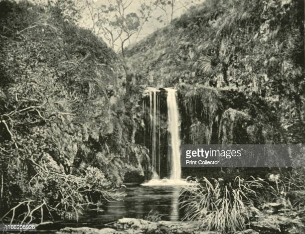 Back Creek Falls Buchan River Victoria' 1901 Settlers first entered the area surrounding Buchan in the late 1830s The Gunaikurnai people identify the...