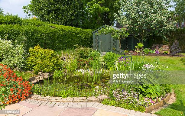 back garden with pond and garden shed, wirral, merseyside, england - pequeno lago - fotografias e filmes do acervo