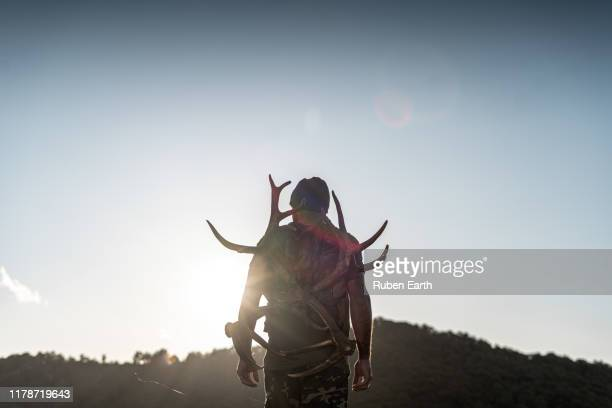 back light and a man in the mountains with antlers - animals hunting stock pictures, royalty-free photos & images