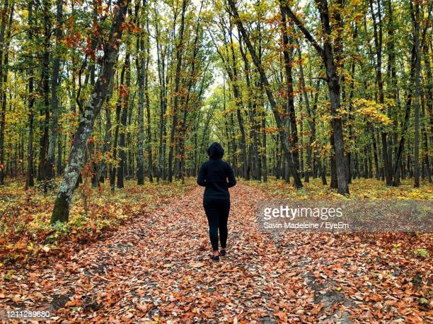 back of woman wearing black tracksuit standing alone in the middle of the forest in autumn - lady madeleine stock-fotos und bilder