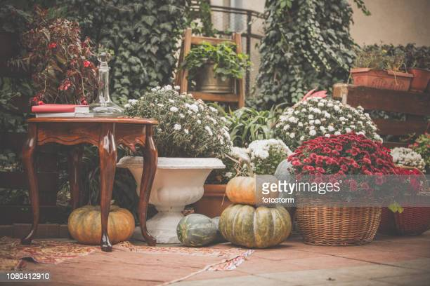 back porch with fall decor - chrysanthemum stock pictures, royalty-free photos & images