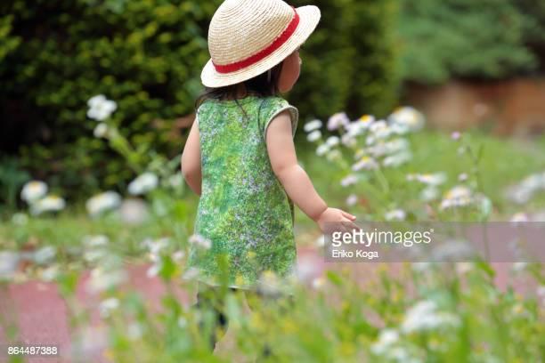 back shot of little girl walking behind flower garden - 植物園 ストックフォトと画像