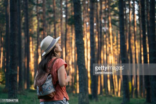 自然に戻る森の中を歩くソロ旅行者。自然の中を歩く幸せな若い女性観光客。晴れた日に森の中でアウトドアを楽しむ。 - 松林 ストックフォトと画像