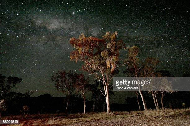 Back under the Australian starry nights