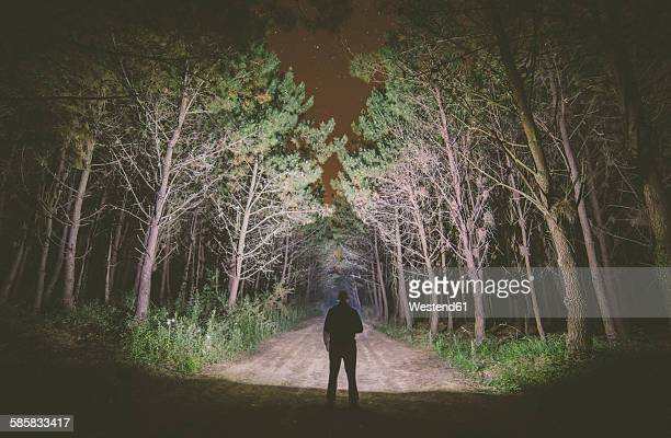 Back view of a man standing on forest track at night illuminating the woods with a flashlight