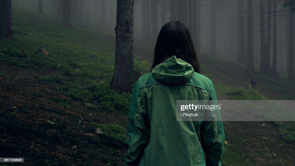 Baksidan på en ung kvinna vandring i skogen : Bildbanksbilder