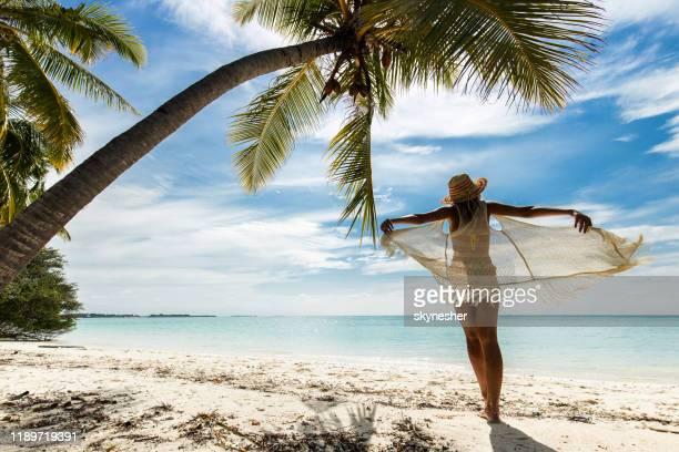 夏の日にビーチを歩く気ままな女性のバックビュー。 - インド洋 ストックフォトと画像