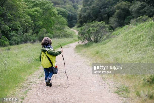 back view of child walking stick by path trail in nature - petaluma stock pictures, royalty-free photos & images
