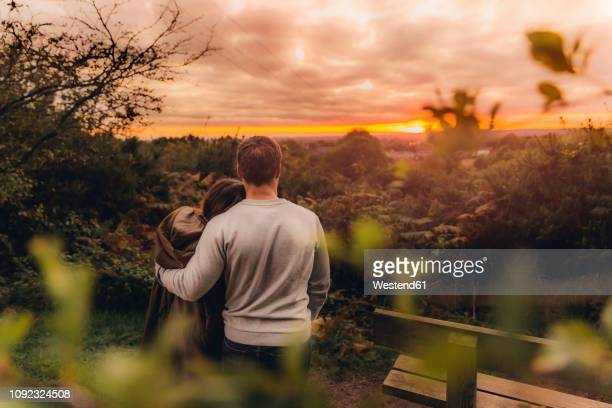 back view of couple in love in autumnal nature watching sunset - romantic sky stock pictures, royalty-free photos & images