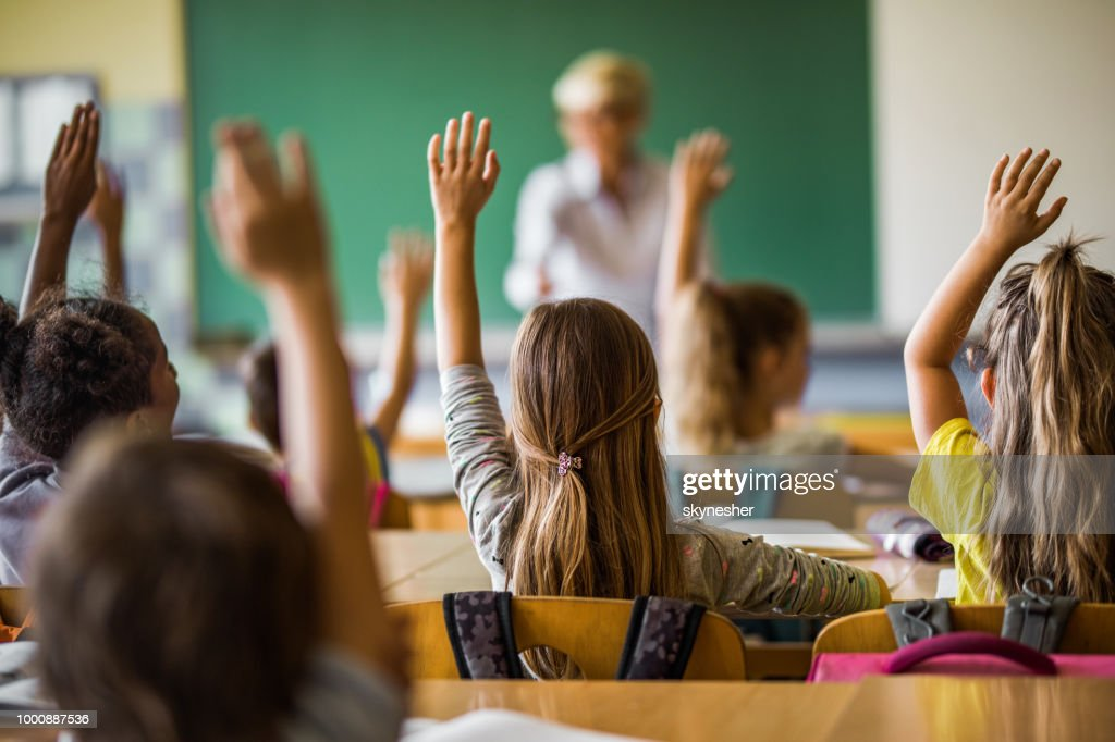 Back view of elementary students raising their arms on a class. : Stock Photo