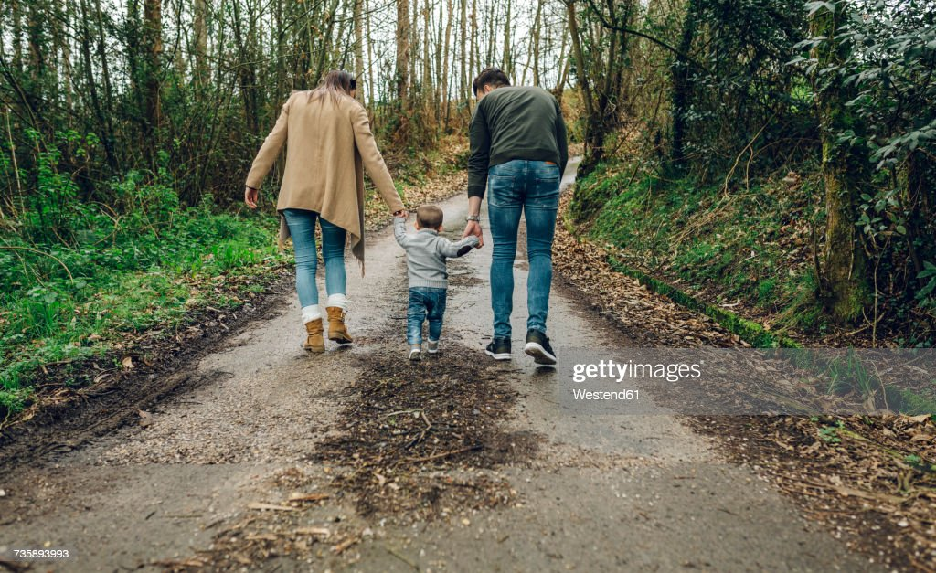 Back view of family walking in forest in autumn : Stock Photo