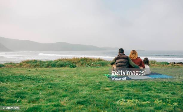 Back view of family with dog sitting on blanket at the coast