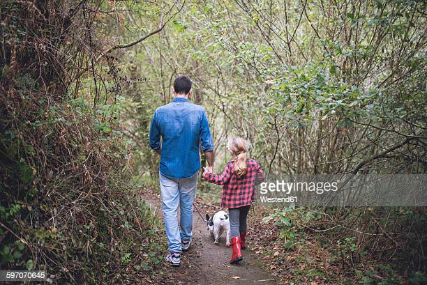 Back view of father and little daughter walking in the forest with their French bulldog