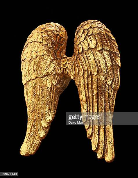 back view of gold wings statue