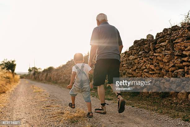 Back view of little boy and his great-grandfather walking on dirt track at backlight