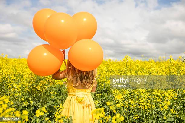 Back view of little girl with orange balloons standing in rape field