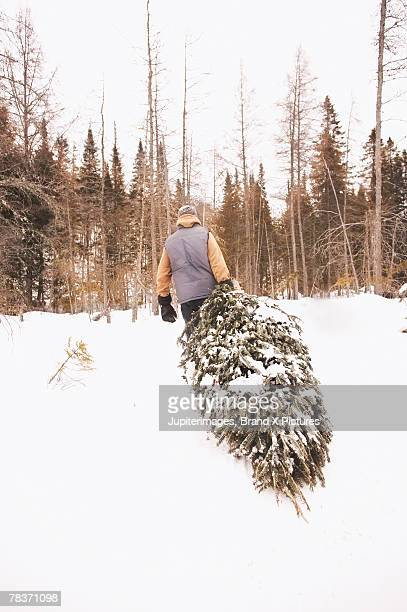 back view of man dragging christmas tree - dragging stock pictures, royalty-free photos & images