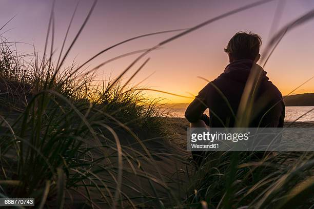 back view of man sitting on the beach - idyllic stock pictures, royalty-free photos & images